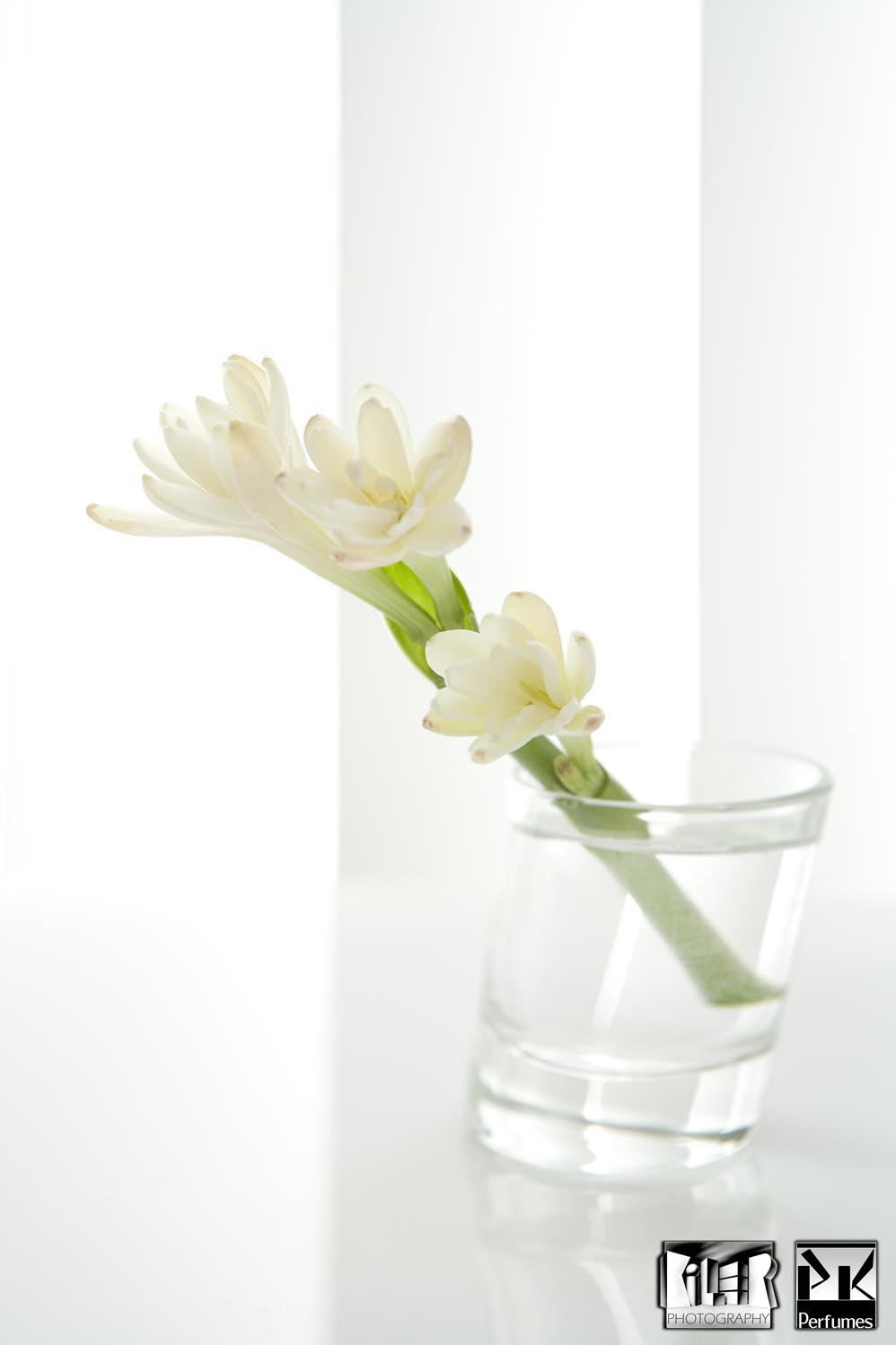 Tuberose light -  in Glass - PK Perfumes