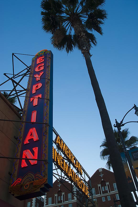 Hollywood Egyptian Theater signge and Palm tree at Dusk